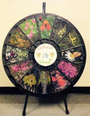 Figure 8: Photo of a circular display that contains weed photos