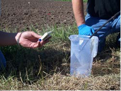 Figure 7: Photo of two people in a field, checking a sample.
