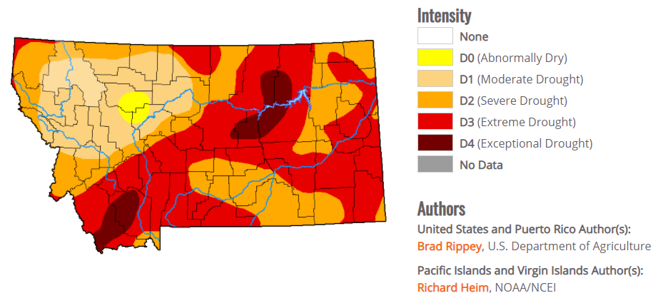 Figure 1. Montana drought conditions as of July 29, 2021.